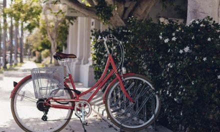 Loi d'orientation des mobilités – Focus : Le Sénat met le vélo au cœur des mobilités