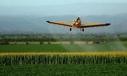Loi Agriculture et Alimentation : notre combat contre les pesticides