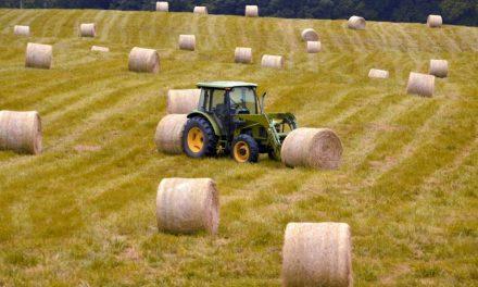 Loi Agriculture et Alimentation au Sénat, une occasion manquée