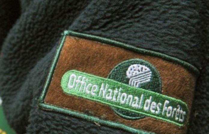 Vers la fin d'un grand service public forestier ?